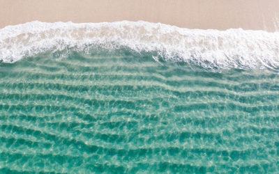 Conseil Mind Center N° 13 – Vivre le flow, l'expérience optimale